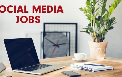 social samosa jobs july 2020